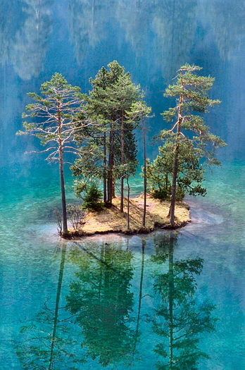 A small island with several pine trees reflected in a blue pool