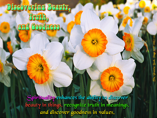 Discovering Beauty, Truth and Goodness - Quote of the Day - Spirituality