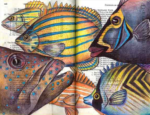 Fishes of Maui by Fred Smith