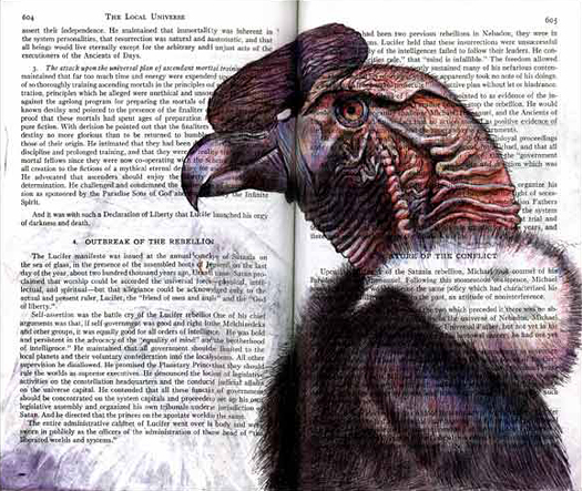 Andean Condor(Vultur gryphus) by Fred Smith