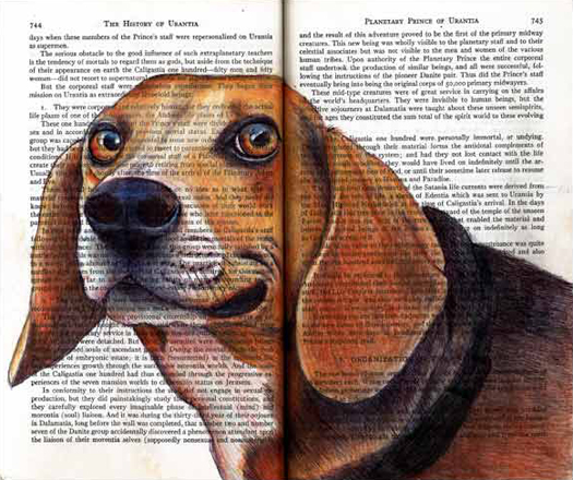 Beagle by Fred Smith