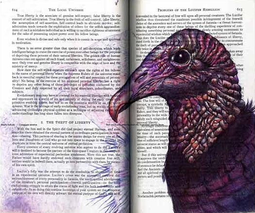 Black Vulture (Coragyps atratus) by Fred Smith