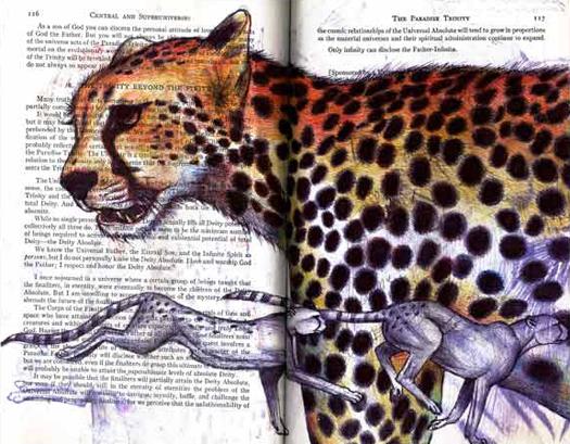 Cheetahs (Acinonyx jubatus) by Fred Smith