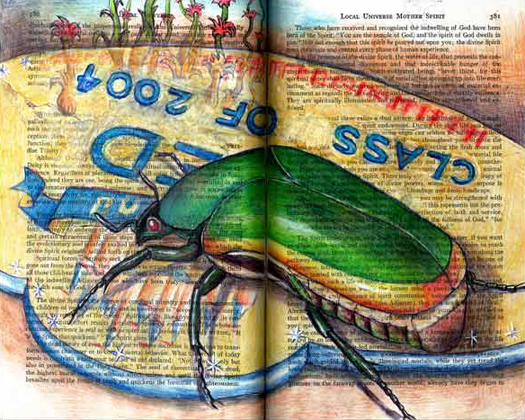 Green Fruit Beetle (Cotinus mutabillis) by Fred Smith