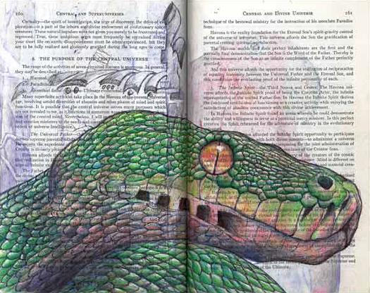 Green Tree Python (Morelia viridis) by Fred Smith