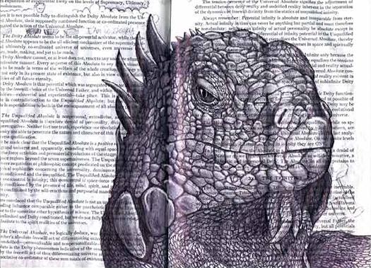Iguana (Iguana iguana) by Fred Smith