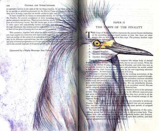 Snowy Egret (Egretta thula) by Fred Smith