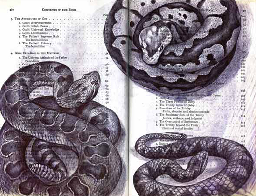 Three Snakes by Fred Smith
