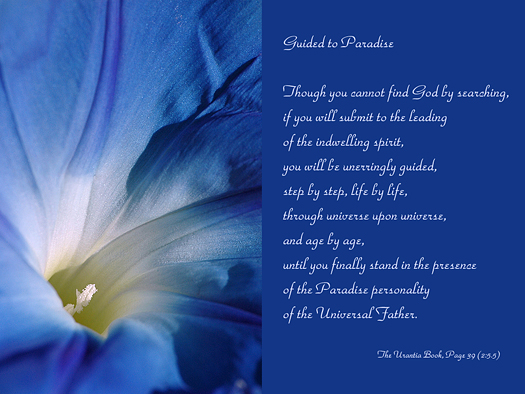 Guided to Paradise - Quote of the Day - inner Spirit, leading by spirit