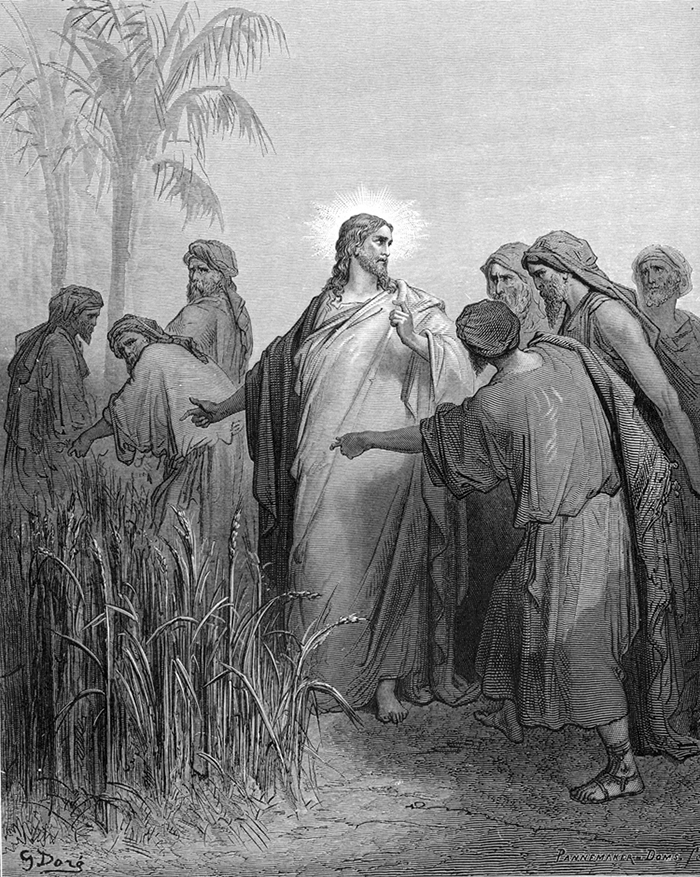 The Disciples Pick Corn on the Sabbath by Gustave Doré