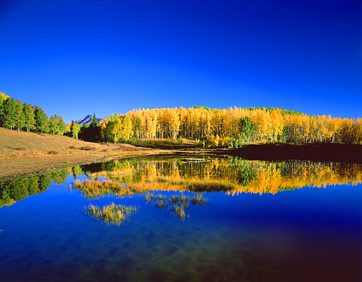 West Elk Fall Reflection - West Elk Wilderness near Crested Butte by John Fielder