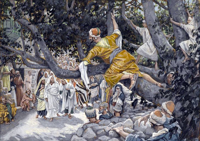 Zacchaeus in the Sycamore Awaiting the Passage of Jesus by James Tissot