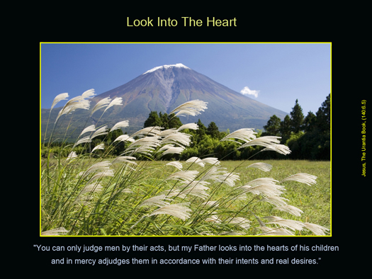 Look Into The Heart