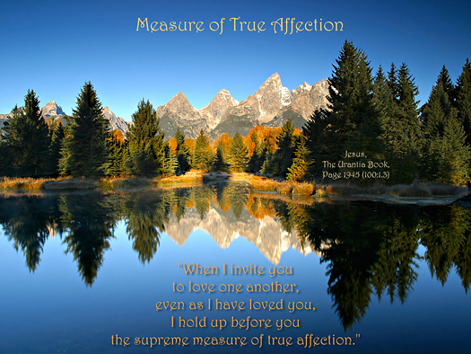 Measure of True Affection
