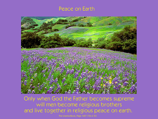 peace, flowers,