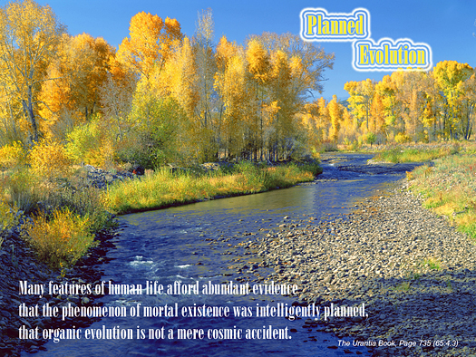 evolution, stream, autumn