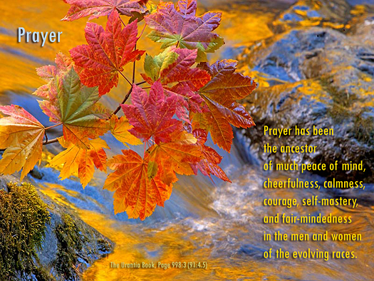 prayer, autumn leaves