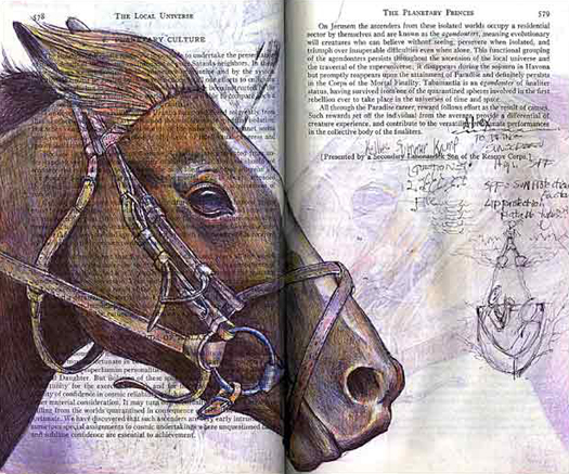 The Horse (equus caballusi) by Fred Smith