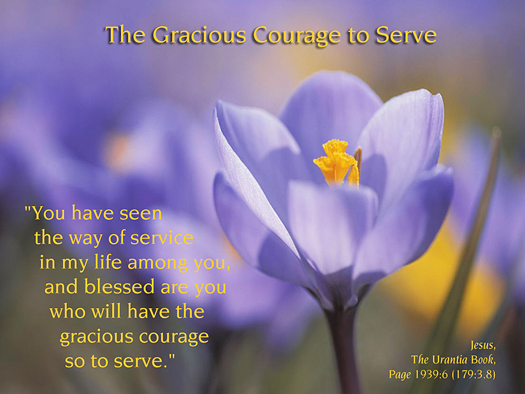 The Gracious Courage to Serve