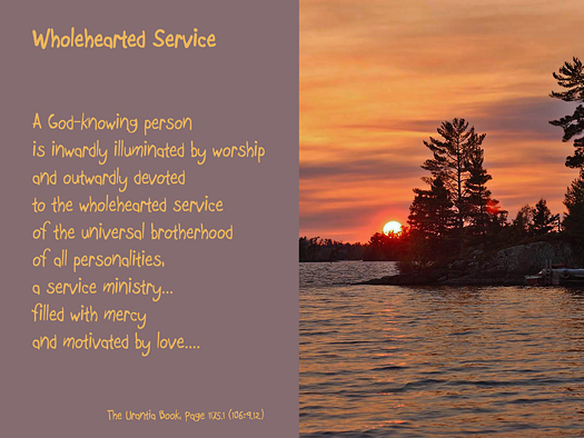 Wholehearted Service