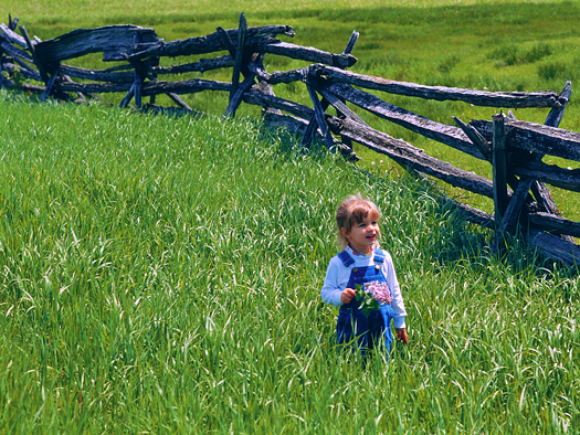 A smiling little girl in a field of grass next to a split-rail fence