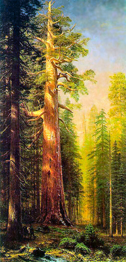 The Great Trees by Albert Bierstadt