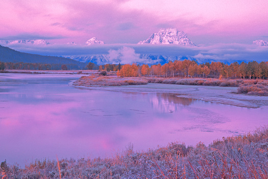 Autumn - Grand Teton National Park