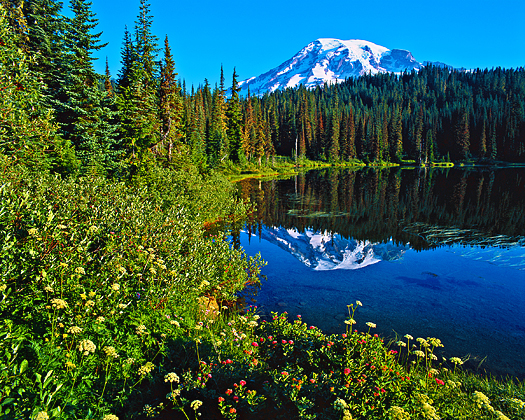 Summer mountain scene with reflecting lake
