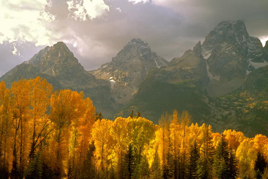 Fall in the Tetons, Wyoming by Don Paulson