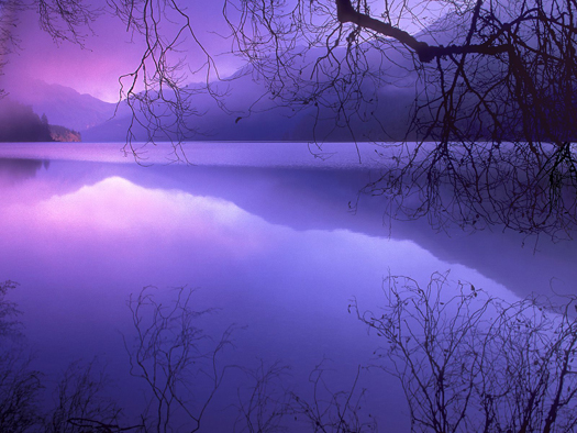 Purple haze over crescent Lake by Don Paulson