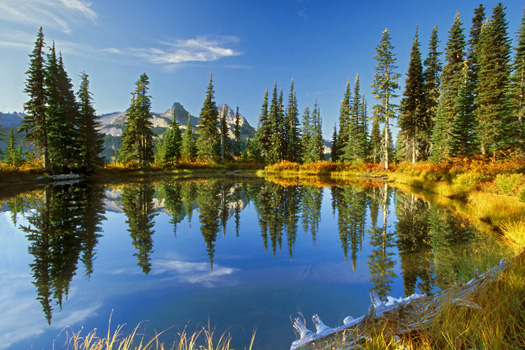 Tatoosh Reflection, Mount Rainier National Park by Don Paulson