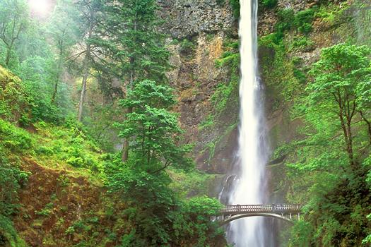 Multnomah Falls, Oregon by Don Paulson