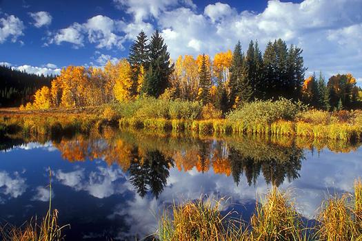 Tatoosh Wilderness, Mount Rainier National Park, Washington by Don Paulson