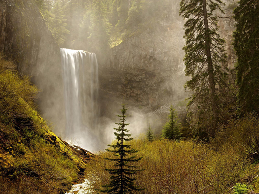 Tamanawas Falls, Mount Hood National Forest, Oregon by Don Paulson