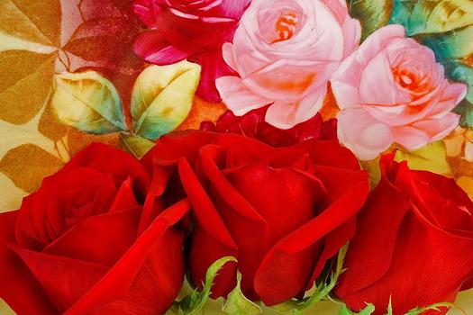 Closeup of roses by Don Paulson