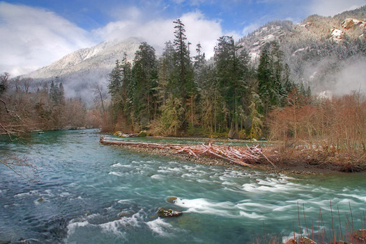 Elwha River, Olympic National Park by Don Paulson