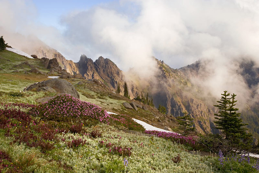 Olympic National Park by Don Paulson