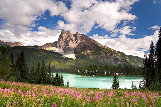 Canadian Rockies by Don Paulson