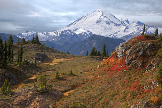 Mount Baker From Yellow Aster Butte, Washington by Don Paulson