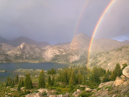Island Lake Rainbow, Bridger National Forest, Wyoming by Don Paulson