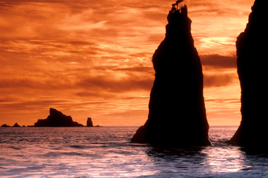 Twin Sea Stacks by Don Paulson