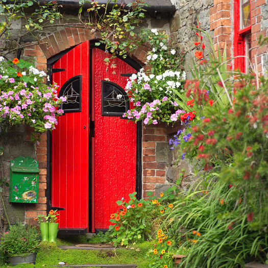Ireland - Kinsale - Red Door in brick wall with overhanging flowers