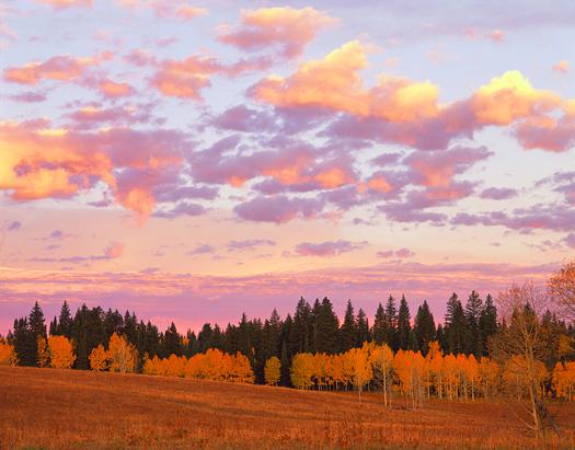 White River NF Sunrise - White River National Forest near Rifle by John Fielder