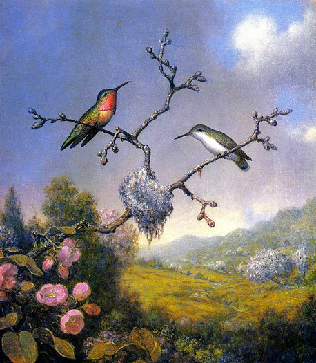 Hummingbirds and Apple Blossoms by Martin Johnson Heade