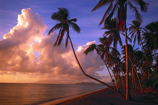 Sunset on a tropical beach