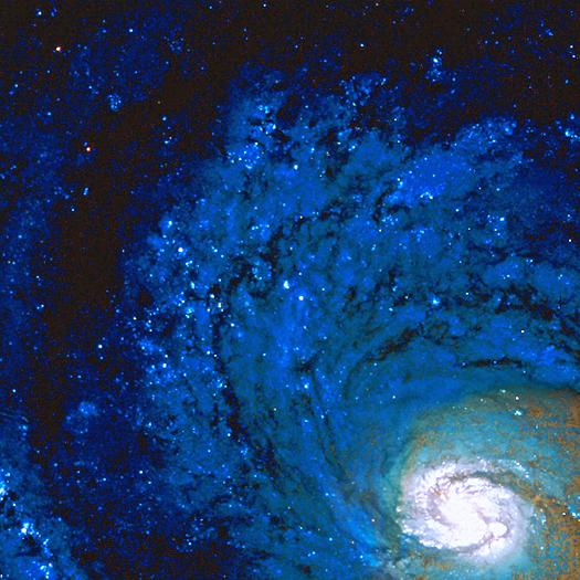 Stellar Image