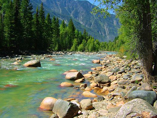 River at Needleton