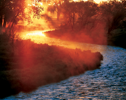 Steaming Creekside Sunrise by Robert Castellino