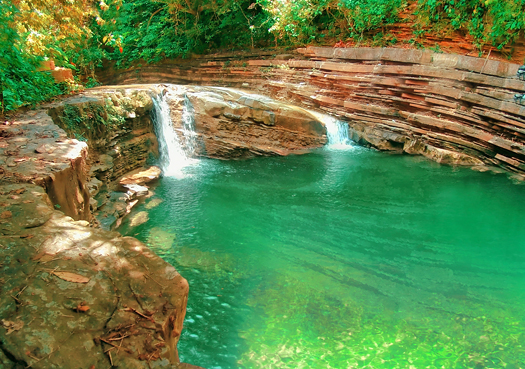 beautiful creek surrounded by vegetation in veracruz, mexico
