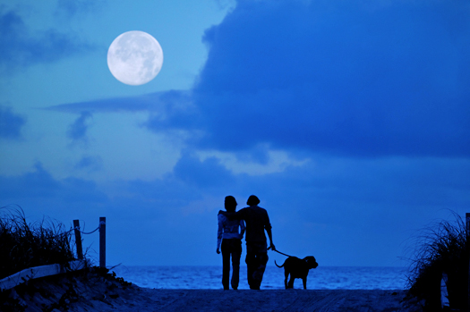 A man, a woman and a dog silhouetted  against a blue sky with a full moon over the ocean